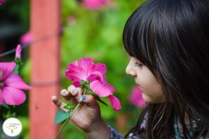 Las alergias en niños y bebés, asma en niños, remedios caseros para el asma, tu pediatra online