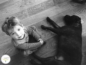 alergias en niños y bebés, animales de compañía para niños